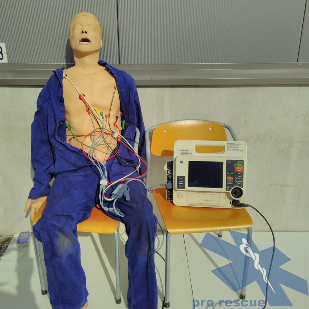 Beispiel EKG Puppe
